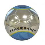 Fenerbahçe Reflection Futbol Topu No:5